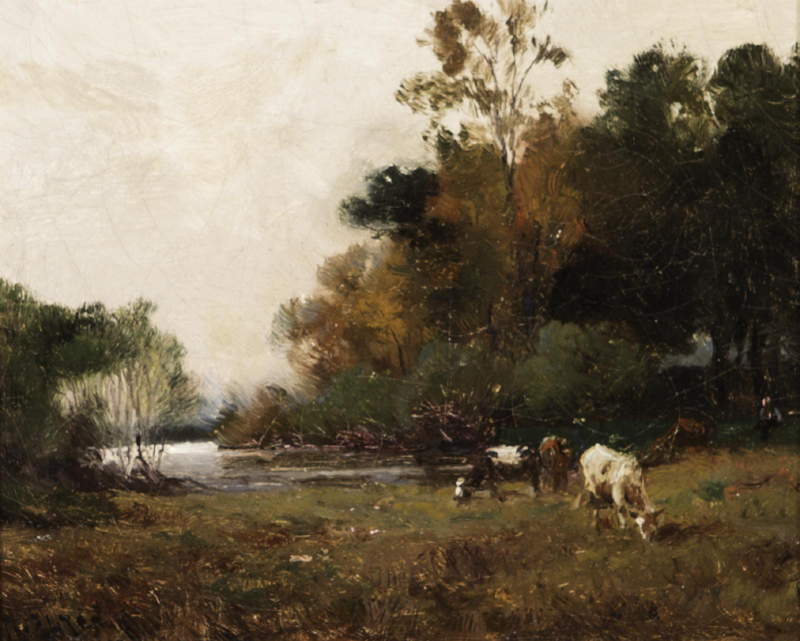 Cows grazing by a river, dark brown ground below and dark green trees behind the cows.