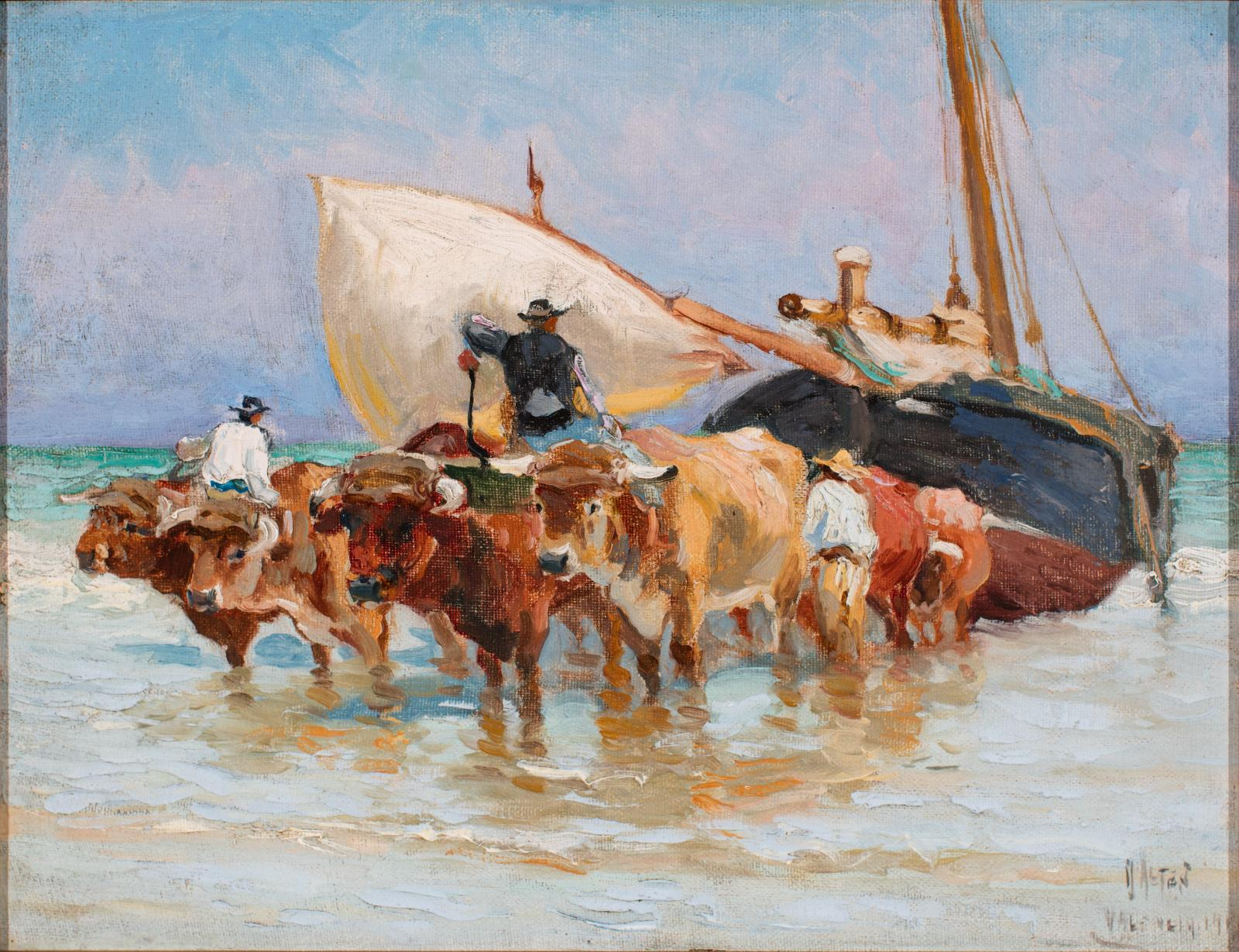 A large team of oxen in the water pulling boats, one boat it white, the other blue and red.