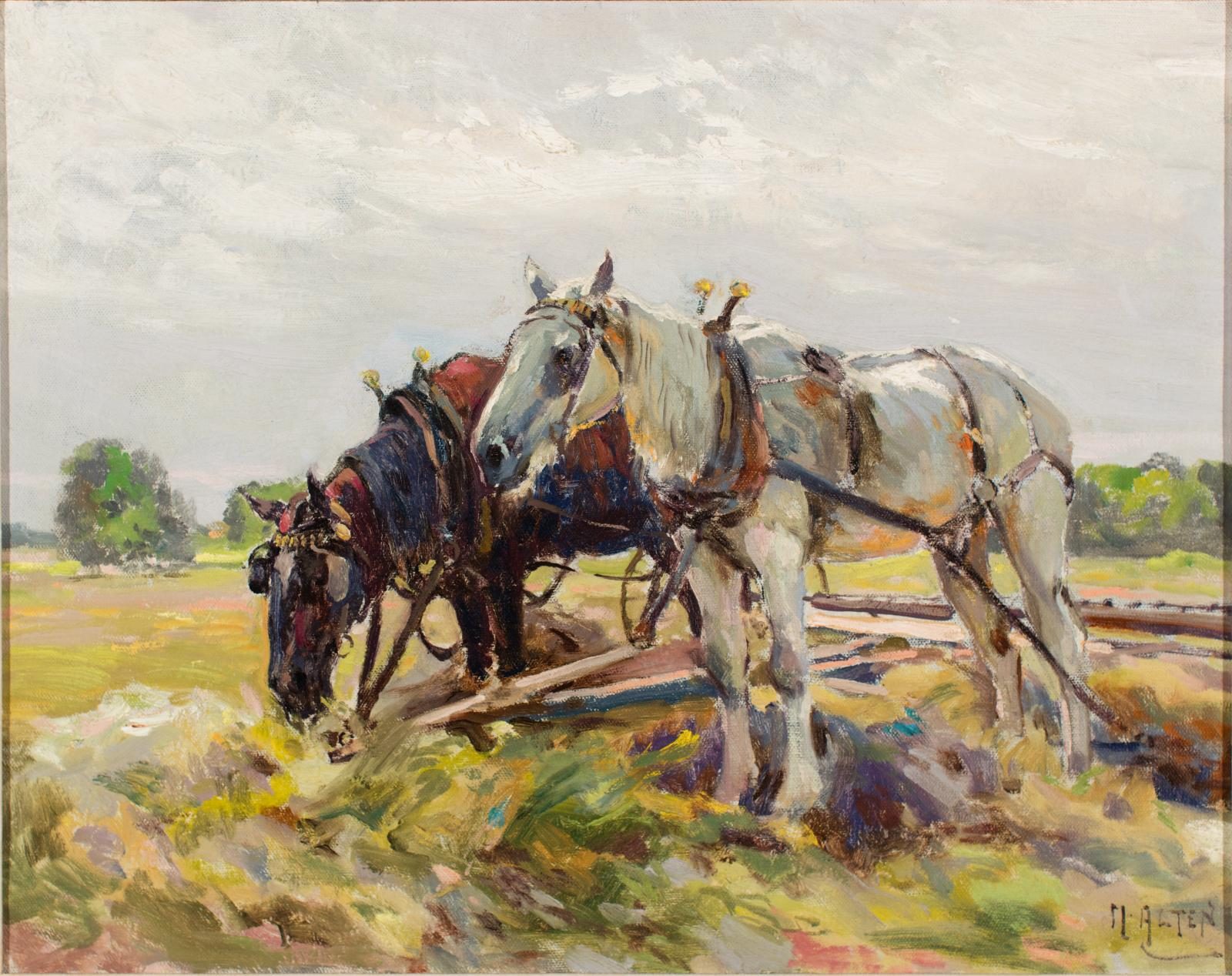 Two harnessed draft horses standing in a field.