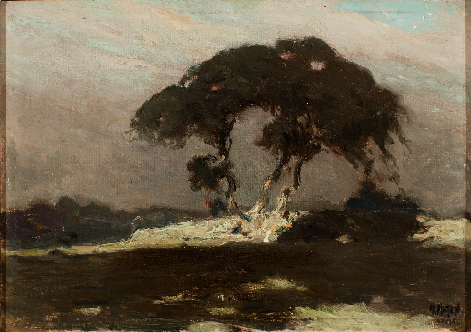 Dark image of a large tree, mostly dark greens and greys.