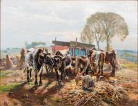 Oxen and farmers gathering corn using a red cart.