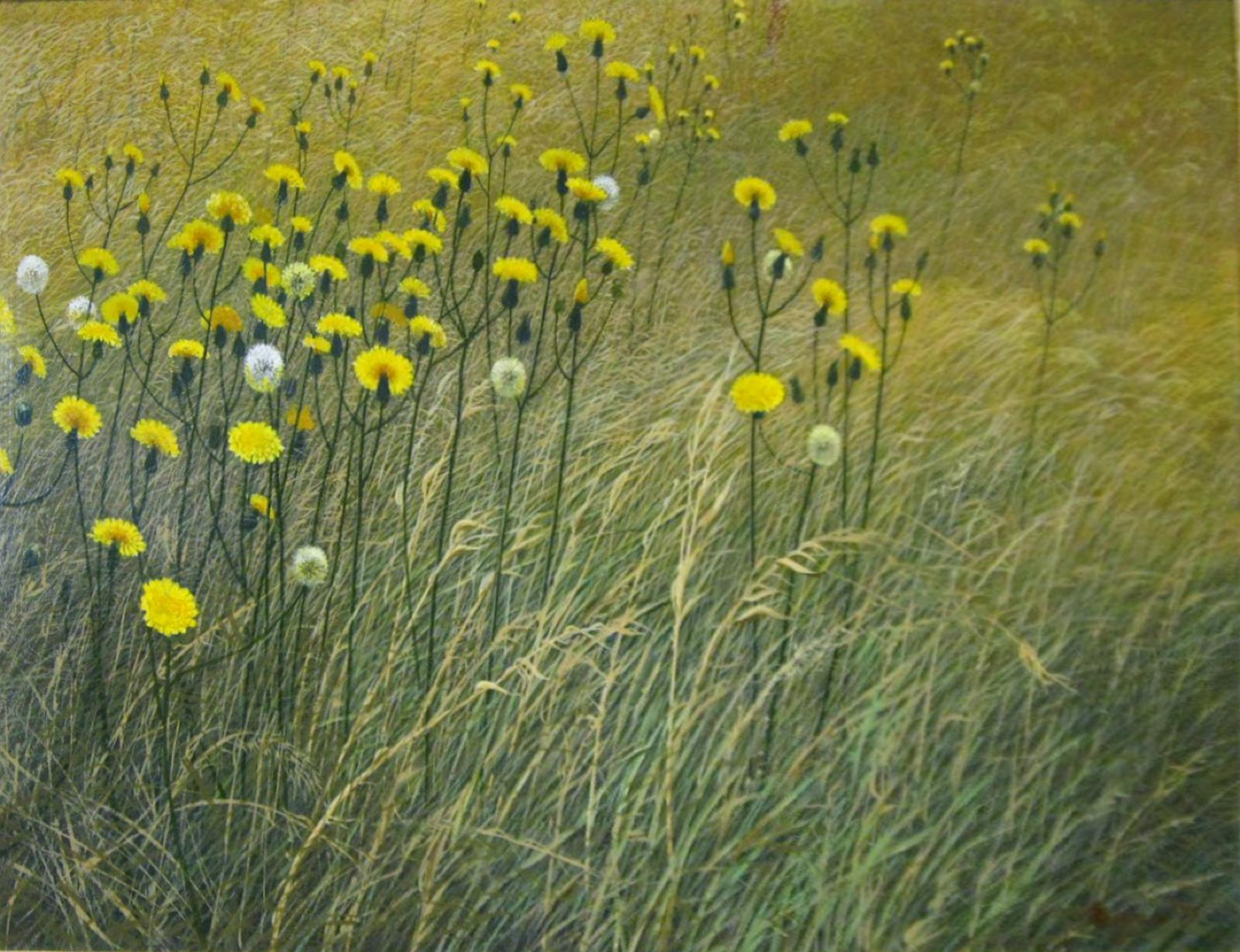 Wheat field with yellow and white flowers blowing in the wind.