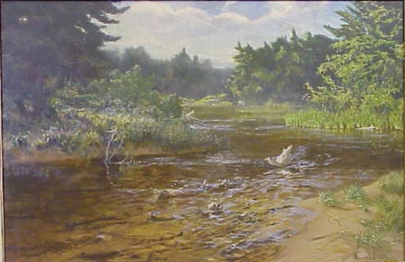 Landscape of a Michigan river.